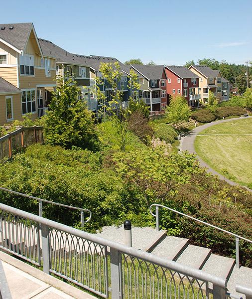 Pond Park Hillside
